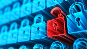 Cybersecurity, Privacy, and Usability